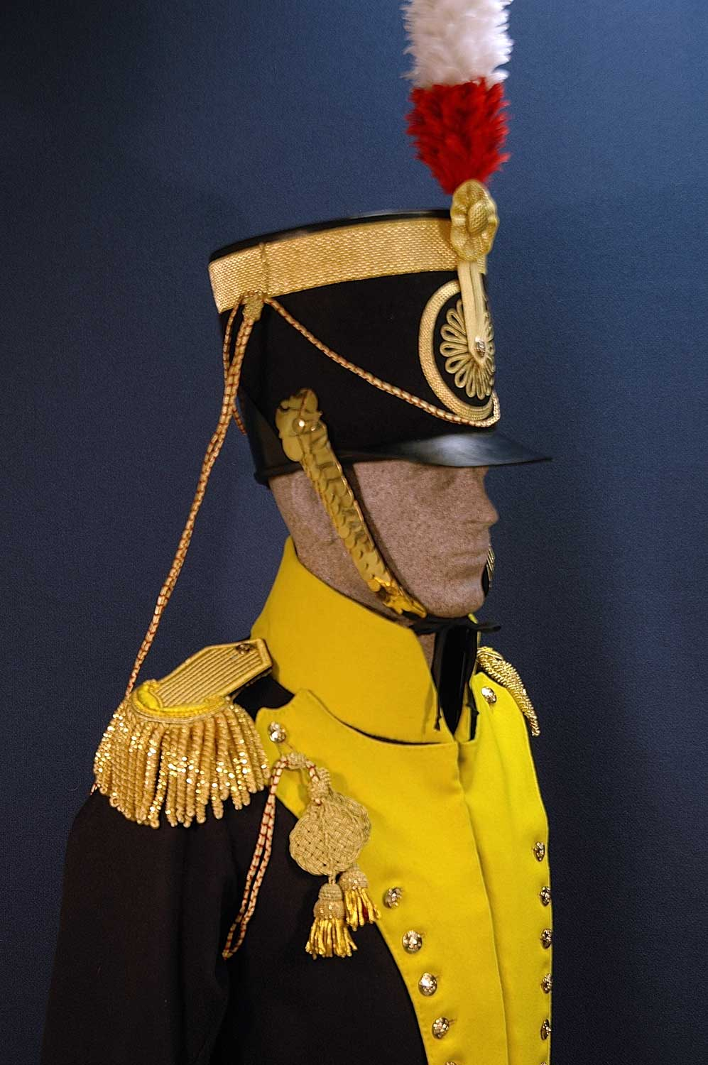British, 19th Light Dragoon, Officer, 1814